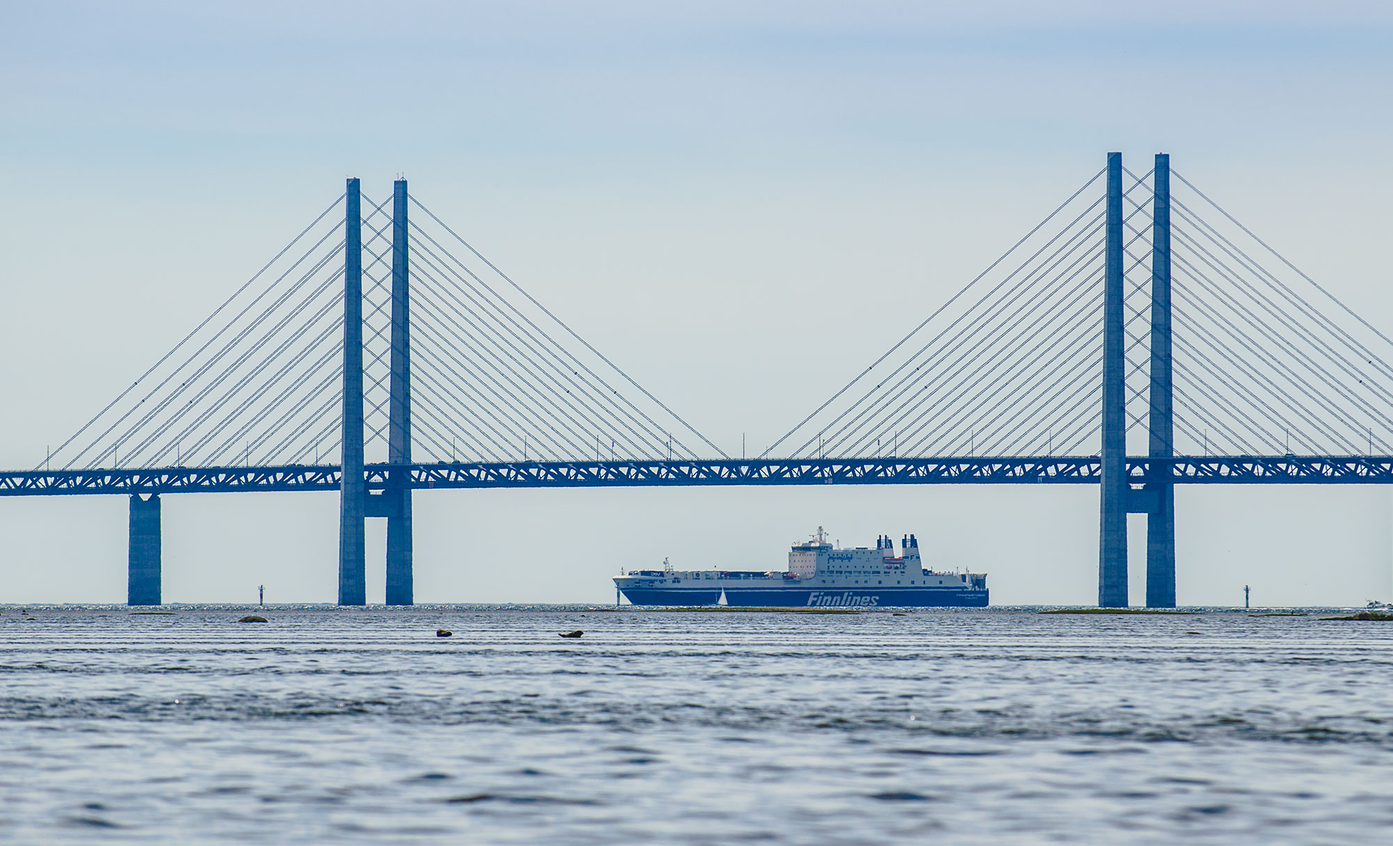 Ship under Oresund Bridge, saltholm, Peberholm, denmark