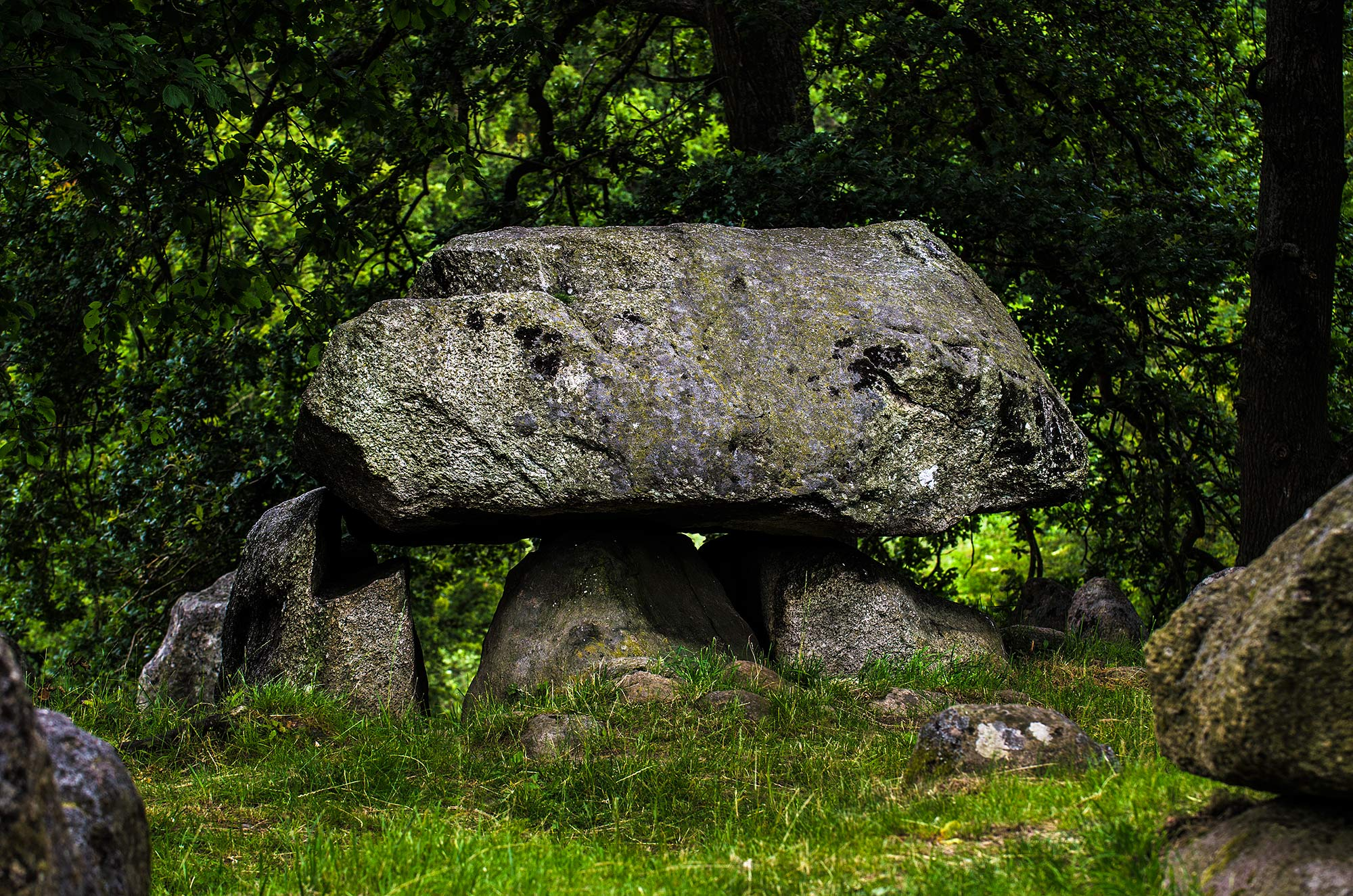 krestenhillerup.dk `s foto af kongedyssen tokkekøb hegn