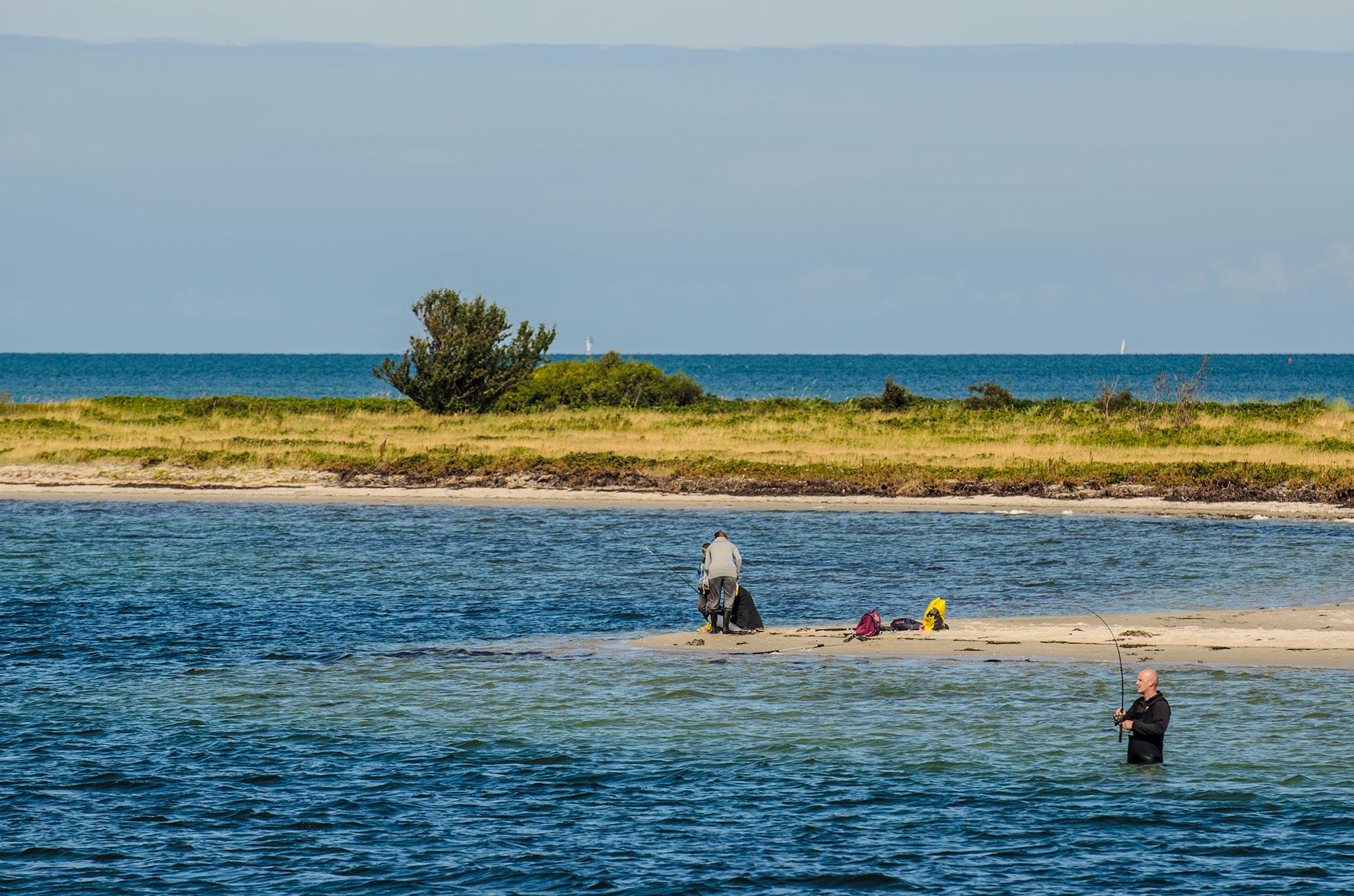 Rørvigbugten også kaldt milionærbugten en frisk gåtur fra rørvig havn.