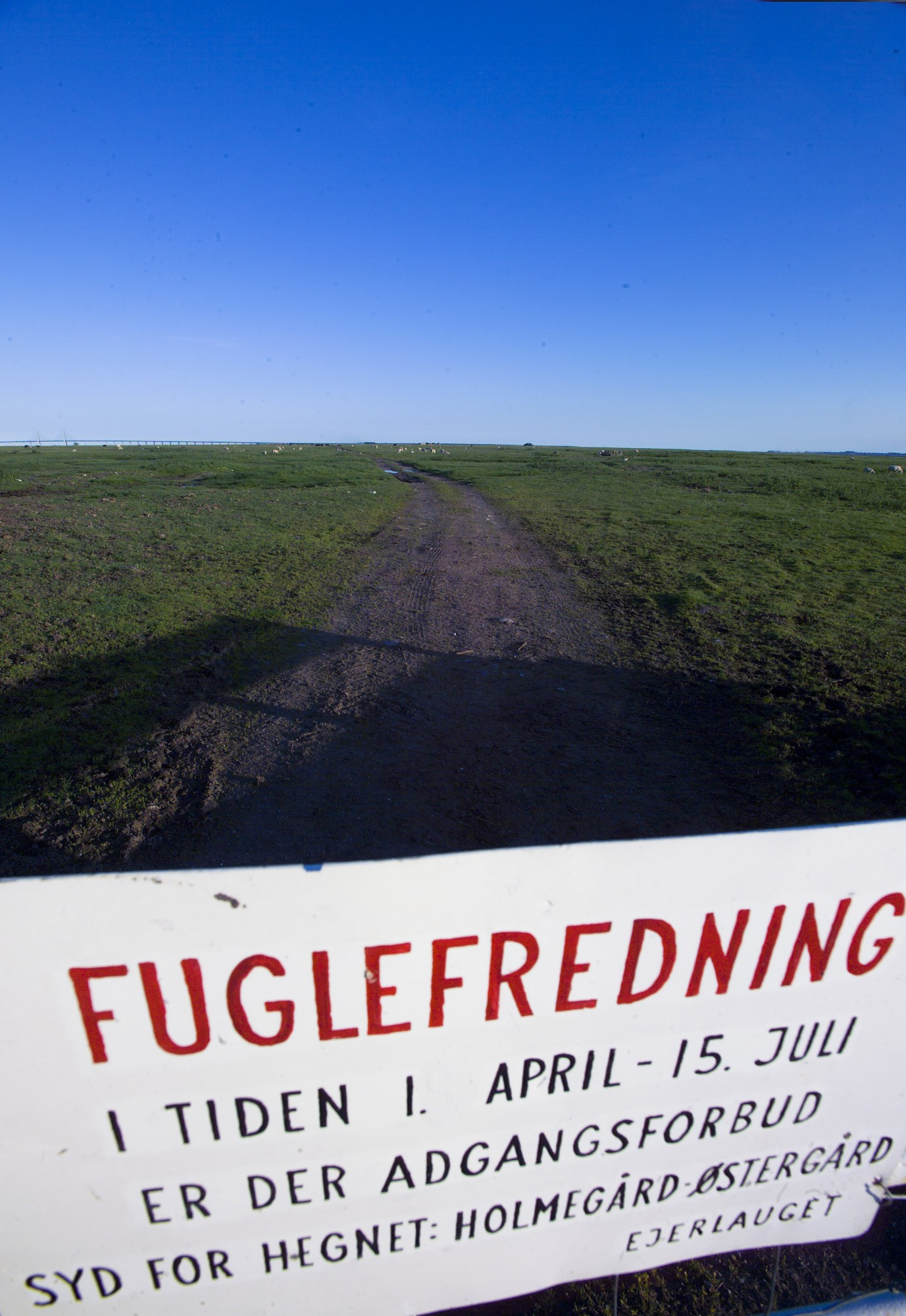 Fuglefrednings grænsen / skiltet på saltholm