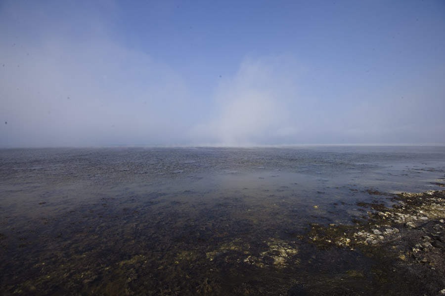havgus over øresund
