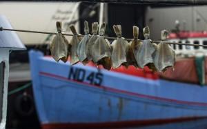 krestenhillerup.dk`s foto af tørfisk